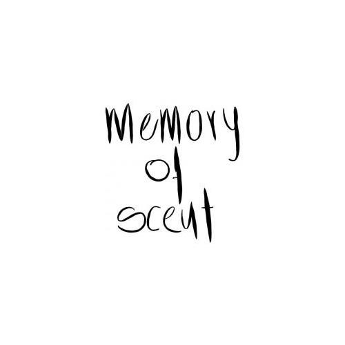 memory of scent parfum divine